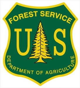 forest-service-badge